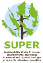 SUPER project logo